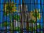 9 葦簀と向日葵 1995年8月16日