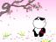 3005 ハイレグパンダ (葉桜) 2010年4月20日