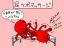 3801 Daily Octopus(84) 1,Jul,2013