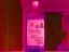 4275 紫蘇ジュース 2015年6月4日